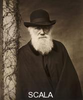 ******** Charles Darwin at his home at Down House, Kent, c1880.